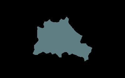 BVDN-Landesverband Berlin