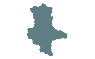 BVDN-Landesverband Sachsen-Anhalt