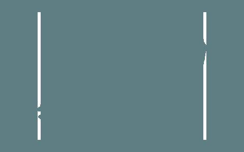 BVDN-Landesverband Sachsen